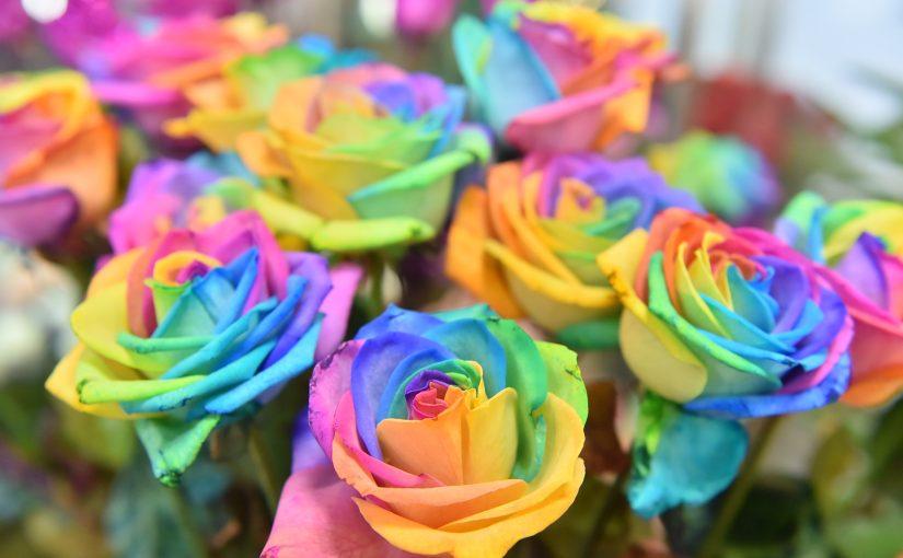 Florist Ranran